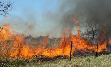Alerta roja en Ibagué por temporada de verano