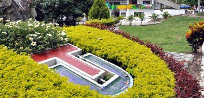 Nueva Rendición de Cuentas en la Universidad del Tolima