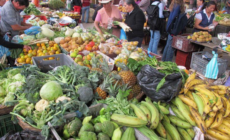 Se alista el mercado campesino por primera vez en la Dorada Caldas