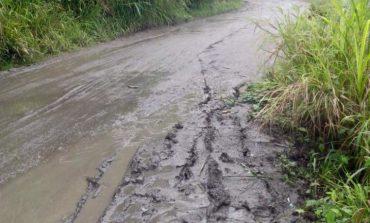 Aprobados recursos para pavimentar la vía Palocabildo - Casabianca