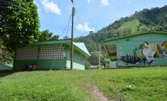 Recuperación de la granja de los Andes una apuesta por los jóvenes del sur del Tolima